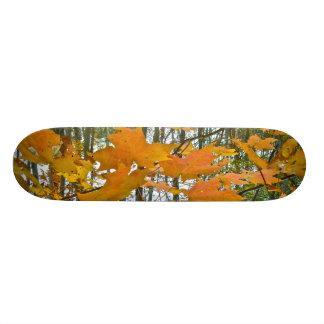 Autumn Maple Foliage Skateboard Deck