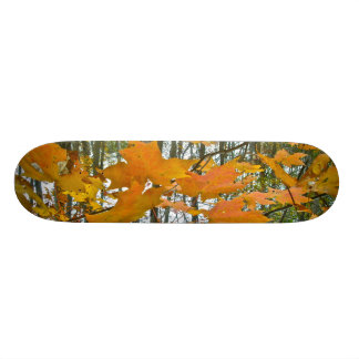 Autumn Maple Foliage Skateboard Deck