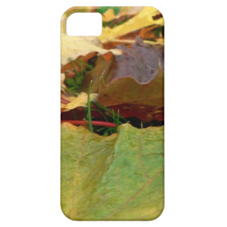AUTUMN MAPLE iPhone SE/5/5s CASE