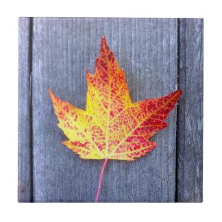 Autumn Maple Leaf Ceramic Tile