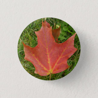Autumn Maple Leaf on Grass Button