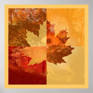 Autumn, Maple Leaf Poster