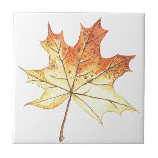Autumn maple leaf tile