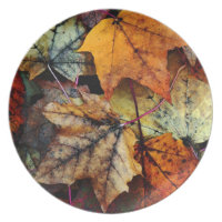 Autumn Maple Leave Fall Foliage- Gift Plate