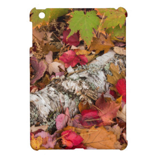 Autumn Maple Leaves Cover Birch Bark On Forest iPad Mini Cover