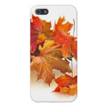 Autumn maple leaves covers for iPhone 5