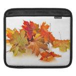 Autumn maple leaves iPad sleeves