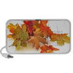 Autumn maple leaves mini speaker