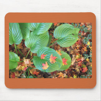 Autumn Maple Leaves on Hosta Mouse Pad