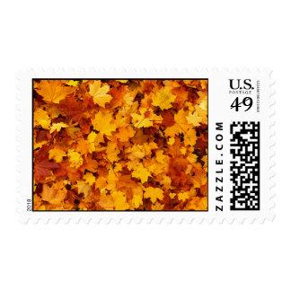 Autumn Maple Leaves Postage