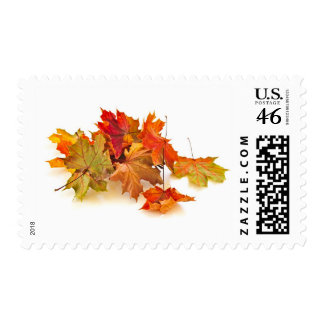 Autumn maple leaves postage stamps