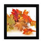 Autumn maple leaves trinket boxes