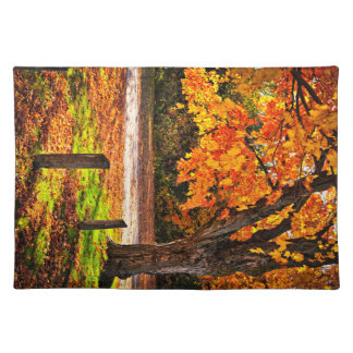 Autumn maple tree near road placemats