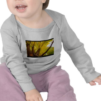Autumn Maple  Tree - Poster T Shirts