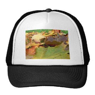 AUTUMN MAPLE TRUCKER HAT