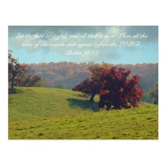 Autumn Mist Postcard