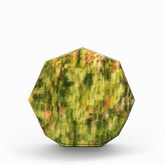Autumn Monet Award