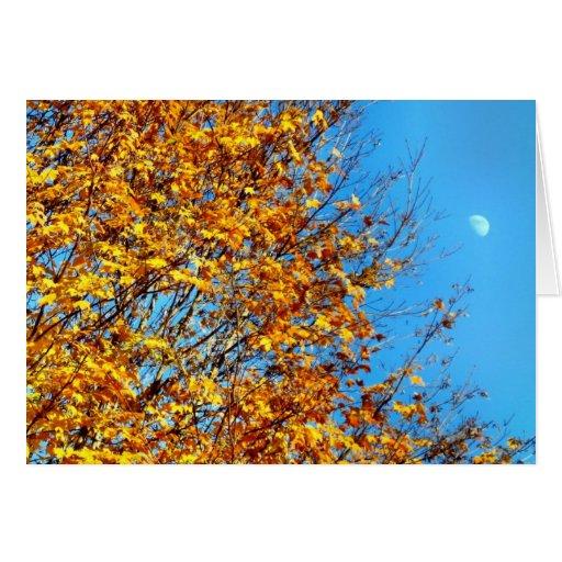 Autumn Moon Card