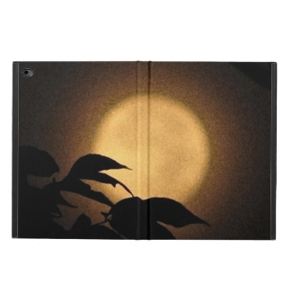Autumn Moon Powis iPad Air 2 Case