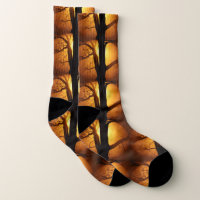 Autumn Moon Shining Through the Tree Fish Eye View Socks