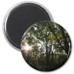 Autumn Morning at Shenandoah National Park 2 Inch Round Magnet