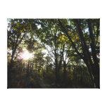Autumn Morning at Shenandoah National Park Canvas Print