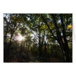 Autumn Morning at Shenandoah National Park Card