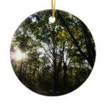 Autumn Morning at Shenandoah National Park Ceramic Ornament