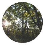 Autumn Morning at Shenandoah National Park Classic Round Sticker