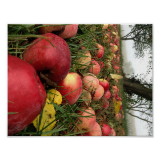 Autumn Morning in the Orchard Poster