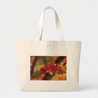 Autumn Mysteries Tote Bags