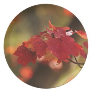 Autumn Mysteries Dinner Plate