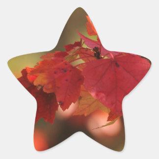 Autumn Mysteries Sticker
