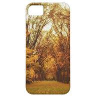 Autumn - New York City iPhone 5 Covers