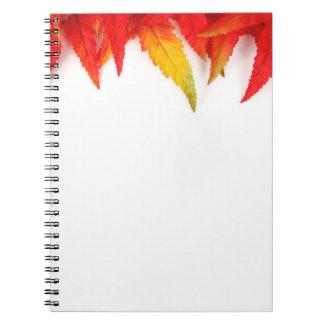 Autumn Notebook fuji_notebook