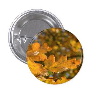 Autumn Oak Leaves Button / Badge
