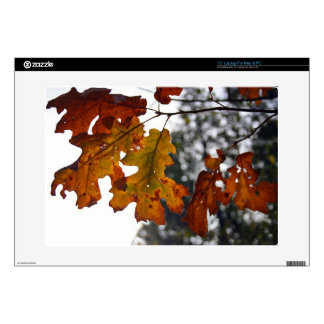 "Autumn Oak Leaves 15"" Laptop Skin"