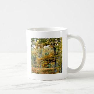 Autumn Old Growth Forest Scottish Highlands Coffee Mug