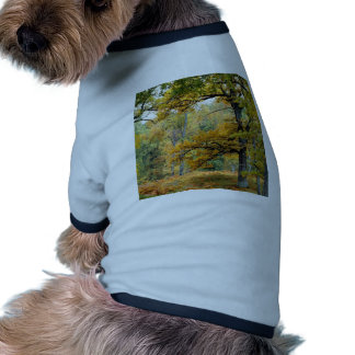 Autumn Old Growth Forest Scottish Highlands Pet Shirt