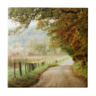 Autumn on a Country Road Tile