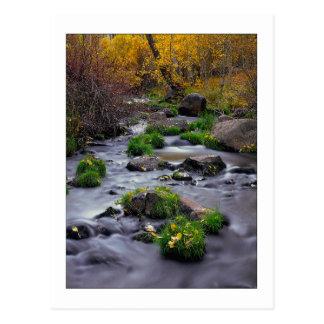 """Autumn On Mill Creek"" Postcard"