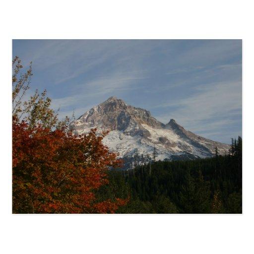 Autumn on Mount Hood Post Cards