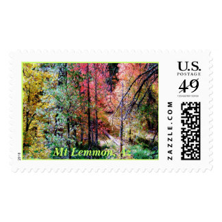 Autumn On Mt Lemmon, Mt Lemmon, Az Postage