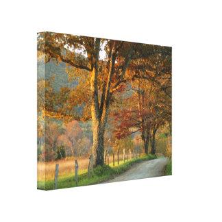 Autumn on Sparks Lane Canvas Print