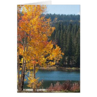 Autumn on the Grand Mesa Blank Photo Template Card