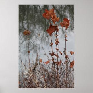 Autumn on the Ohio river Print