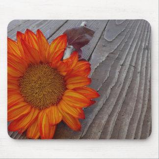 Autumn Orange Sunflower Blossom Mouse Pad