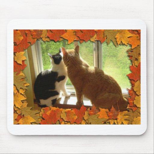 Autumn Orange Tabby Cats Mouse Pad