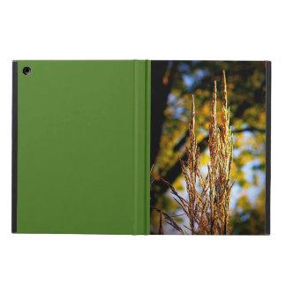 Autumn Ornamental Grass iPad Air Cover