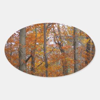 Autumn Oval Sticker